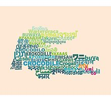 CROCODILE ~ in writing systems of the world Photographic Print