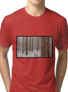 April snowstorm on pines Tri-blend T-Shirt