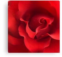 Red Rose Flower Blossom Roses Flowers Background Canvas Print