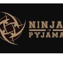 Ninjas In Pyjamas Sticker Sticker