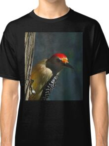 Red-Bellied Woodpecker Classic T-Shirt