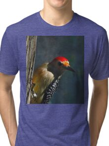 Red-Bellied Woodpecker Tri-blend T-Shirt