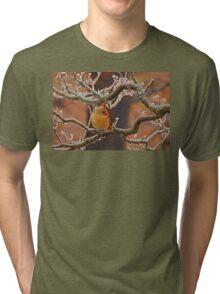Icy Perch Tri-blend T-Shirt