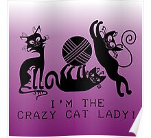 Playful Black Cats Crazy Cat Lady Poster
