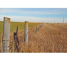 The Fence Row Photographic Print