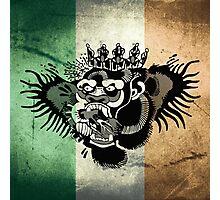 McGregor TriColour Gorilla Photographic Print
