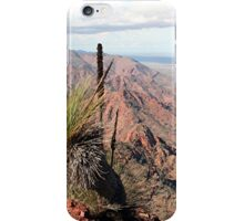 Gammon Ranges, Outback, South Australia iPhone Case/Skin