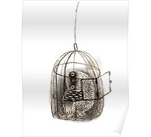 Black Owl in a Birdcage Poster