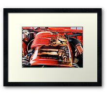 Native Power Framed Print