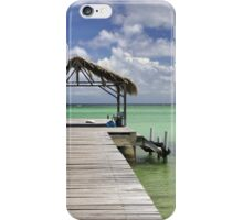 Pigeon Point iPhone Case/Skin