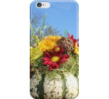 Low cost vase iPhone Case/Skin