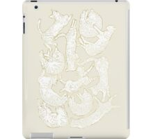 11 sleeping cat iPad Case/Skin