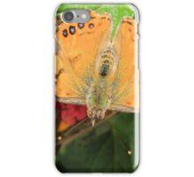 Butterfly on Flowers iPhone Case/Skin