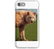 The Watching Wolf iPhone Case/Skin