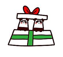 Christmas Twin Pandas  Photographic Print
