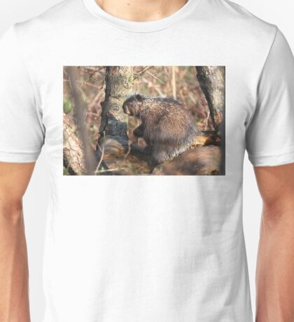 Boy...do I ever need a coffee - Porcupine T-Shirt