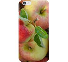 Basket of Fresh Handpicked Cox Apples iPhone Case/Skin