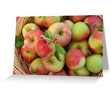 Basket of Fresh Handpicked Cox Apples Greeting Card