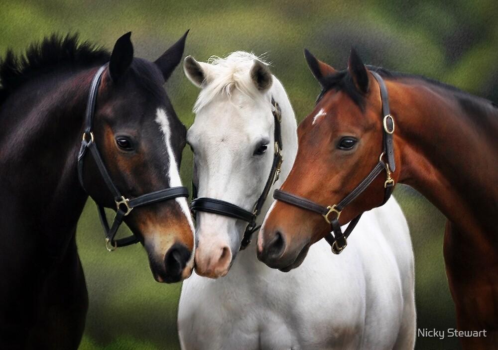 Three friends by Nicky Stewart