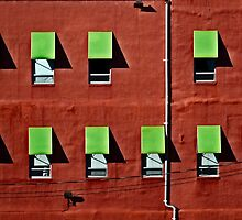 Wall in Red and Green by cclaude