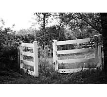 Country Fence Photographic Print