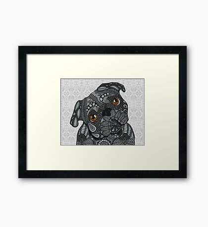Cute black Pug Framed Print