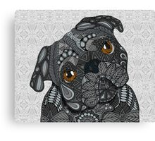 Cute black Pug Canvas Print