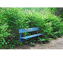 Old Park Bench Photographic Print