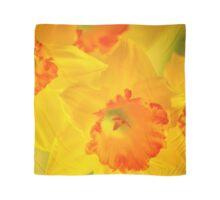 Bright Daffodil SQ  Scarf