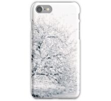 Spring Cherry in High-Key iPhone Case/Skin