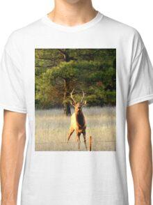 Bull Elk in Montana Classic T-Shirt