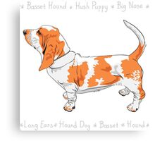 dog Basset Hound Canvas Print