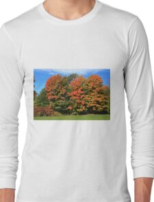 Tress  in Fall colours.  Long Sleeve T-Shirt