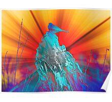 Shining Bird  Poster