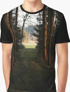 one of my favorite forest places in the evening light Graphic T-Shirt