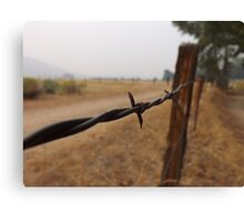 Barb Wire Fence Canvas Print