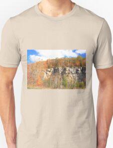 Fall arived on Niagara Escarpment.  T-Shirt