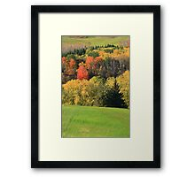 Fall in the valley. Framed Print