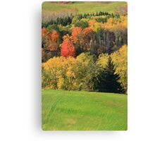 Fall in the valley. Canvas Print