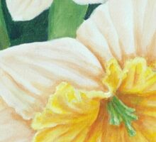 Spring Daffodils Painting Sticker