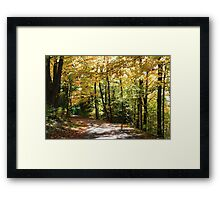 Fall country road. Framed Print