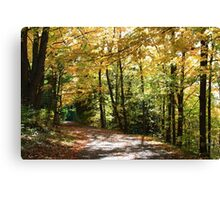 Fall country road. Canvas Print