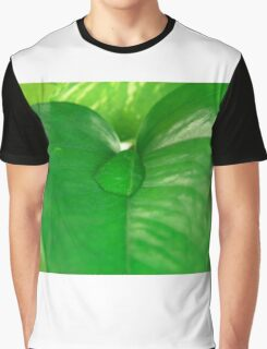 Leavs of Devil's Ivy and water drop. Graphic T-Shirt