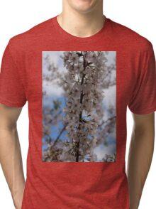 Cherry Blossoms II Tri-blend T-Shirt