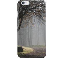 Misty Path iPhone Case/Skin