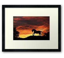 Pretty Running Horse in Firey Sunset Framed Print