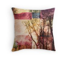 Carry Me Home Throw Pillow