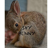 Shy Bunny -  Anytime Cute Photographic Print