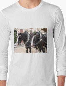 Carriage horses, England Long Sleeve T-Shirt