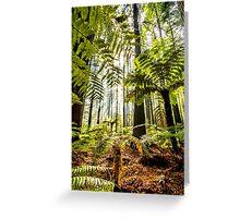Whakarewarewa Forest Greeting Card